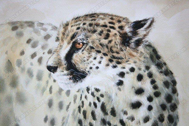 Endangered destiny (watercolour)