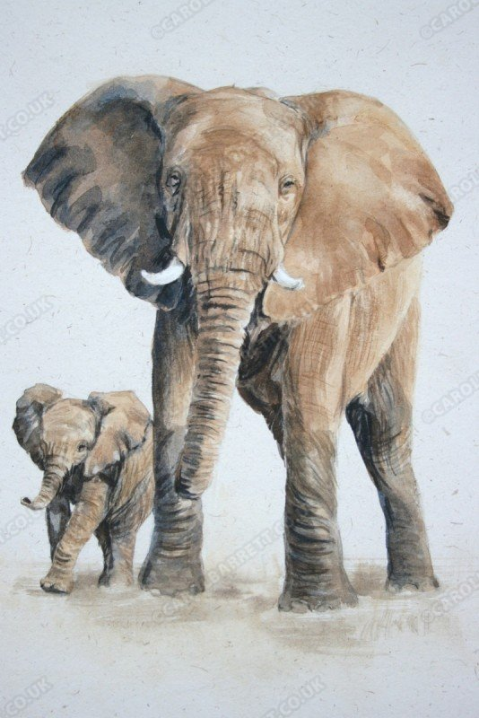"""<span style=""""float:left"""">Acting guardian</span><span style=""""float:right""""><a href=""""http://www.carolbarrett.co.uk/paintings/acting-guardian/?from=/elephants-sold/"""">More info »</a></span>"""