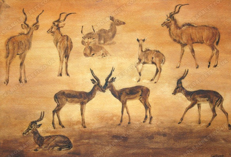 "<span style=""float:left"">Antelope dusk</span> <span style=""float:right""><a href=""http://www.carolbarrett.co.uk/paintings/antelope-dusk/?from=/african-wildlife-for-sale/"">More info »</a></span>"
