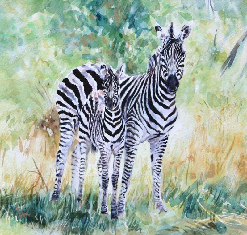 """<span style=""""float:left"""">Attached like glue</span><span style=""""float:right""""><a href=""""http://www.carolbarrett.co.uk/paintings/attached-like-glue/?from=/african-wildlife-sold/"""">More info »</a></span>"""