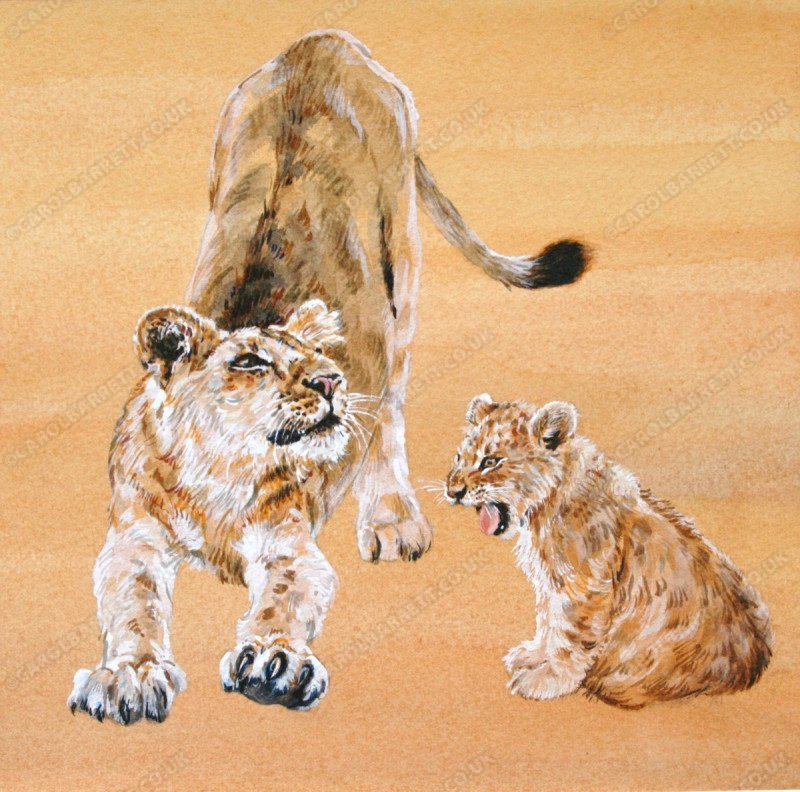 "<span style=""float:left"">Big stretch</span> <span style=""float:right""><a href=""http://www.carolbarrett.co.uk/paintings/big-stretch/?from=/big-cats-sold/"">More info »</a></span>"