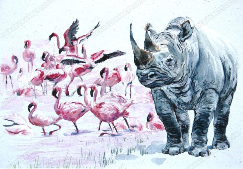 """<span style=""""float:left"""">By Nakuru</span><span style=""""float:right""""><a href=""""http://www.carolbarrett.co.uk/paintings/by-nakuru/?from=/african-wildlife-sold/"""">More info »</a></span>"""