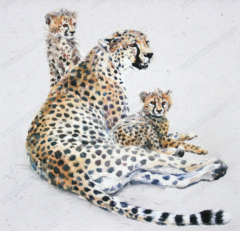 "<span style=""float:left"">Devoted cheetah mom</span> <span style=""float:right""><a href=""http://www.carolbarrett.co.uk/paintings/devoted-cheetah-mom/?from=/cheetah-sold/"">More info »</a></span>"