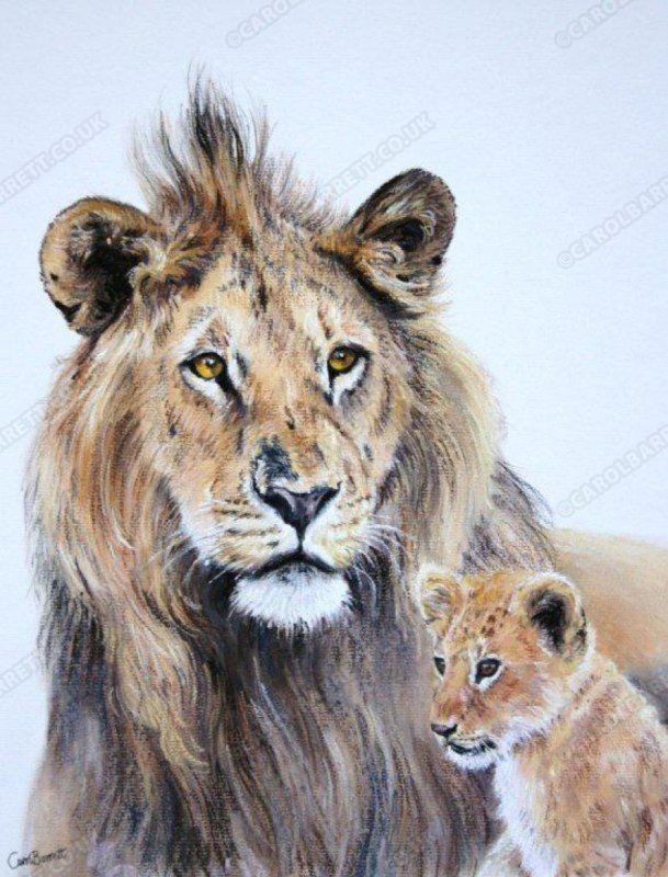 "<span style=""float:left"">Father and Son</span> <span style=""float:right""><a href=""http://www.carolbarrett.co.uk/paintings/father-and-son/?from=/big-cats-sold/"">More info »</a></span>"