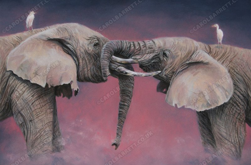 """<span style=""""float:left"""">Friends at Dusk</span><span style=""""float:right""""><a href=""""http://www.carolbarrett.co.uk/paintings/friends-at-dusk/?from=/elephants-for-sale/"""">More info »</a></span>"""
