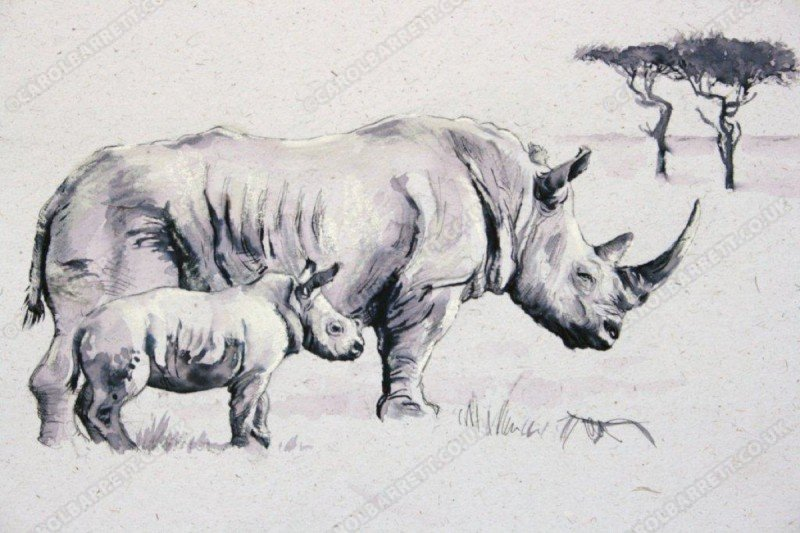 "<span style=""float:left"">Giant's hope</span> <span style=""float:right""><a href=""http://www.carolbarrett.co.uk/paintings/giants-hope/?from=/african-wildlife-sold/"">More info »</a></span>"