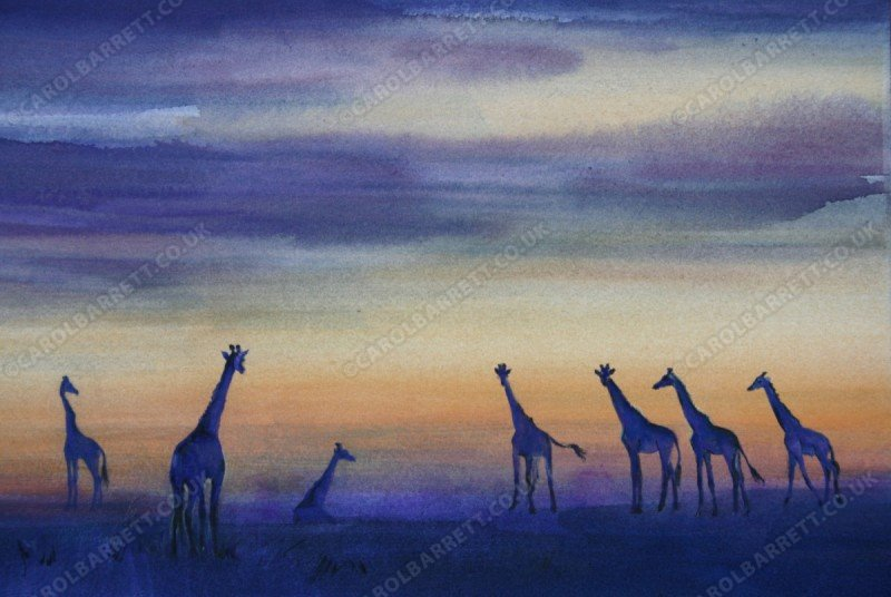 "<span style=""float:left"">Giraffe skyline</span> <span style=""float:right""><a href=""http://www.carolbarrett.co.uk/paintings/giraffe-skyline/?from=/african-wildlife-for-sale/"">More info »</a></span>"