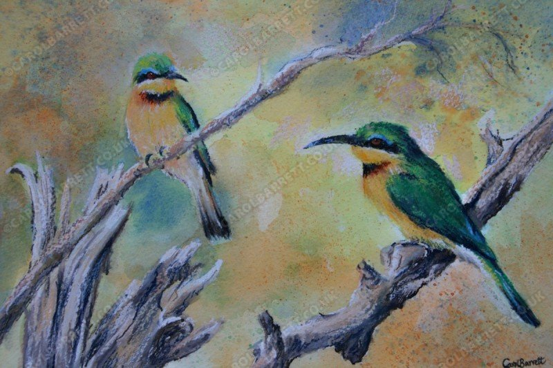 """<span style=""""float:left"""">Little Bee-eater 1</span><span style=""""float:right""""><a href=""""http://www.carolbarrett.co.uk/paintings/little-bee-eater-1/?from=/birds-sold/"""">More info »</a></span>"""