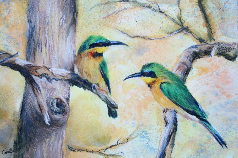 """<span style=""""float:left"""">Little Bee-eater 2</span><span style=""""float:right""""><a href=""""http://www.carolbarrett.co.uk/paintings/little-bee-eater-2/?from=/birds-sold/"""">More info »</a></span>"""