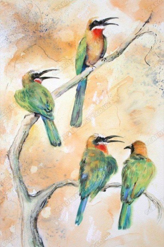 """<span style=""""float:left"""">Pairing up – Whitefronted Bee-eater</span><span style=""""float:right""""><a href=""""http://www.carolbarrett.co.uk/paintings/pairing-up-whitefronted-bee-eater-gifted/?from=/birds-sold/"""">More info »</a></span>"""