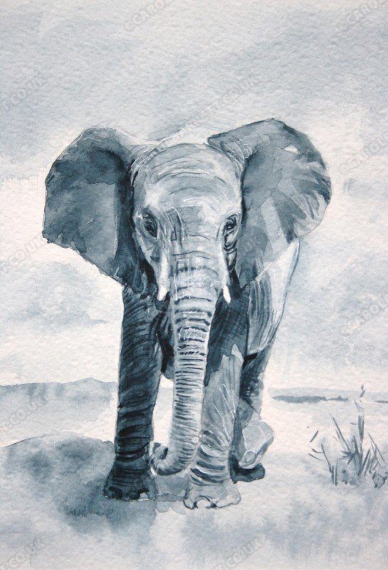 """<span style=""""float:left"""">Taking the weight off</span><span style=""""float:right""""><a href=""""http://www.carolbarrett.co.uk/paintings/taking-the-weight-off/?from=/elephants-sold/"""">More info »</a></span>"""