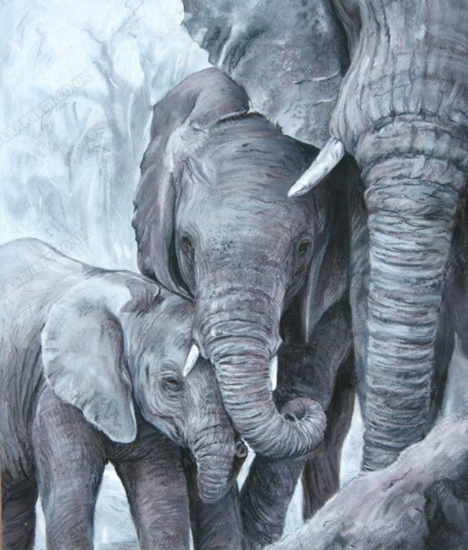 "<span style=""float:left"">Tender Giants</span> <span style=""float:right""><a href=""http://www.carolbarrett.co.uk/paintings/tender-giants/?from=/elephants-sold/"">More info »</a></span>"