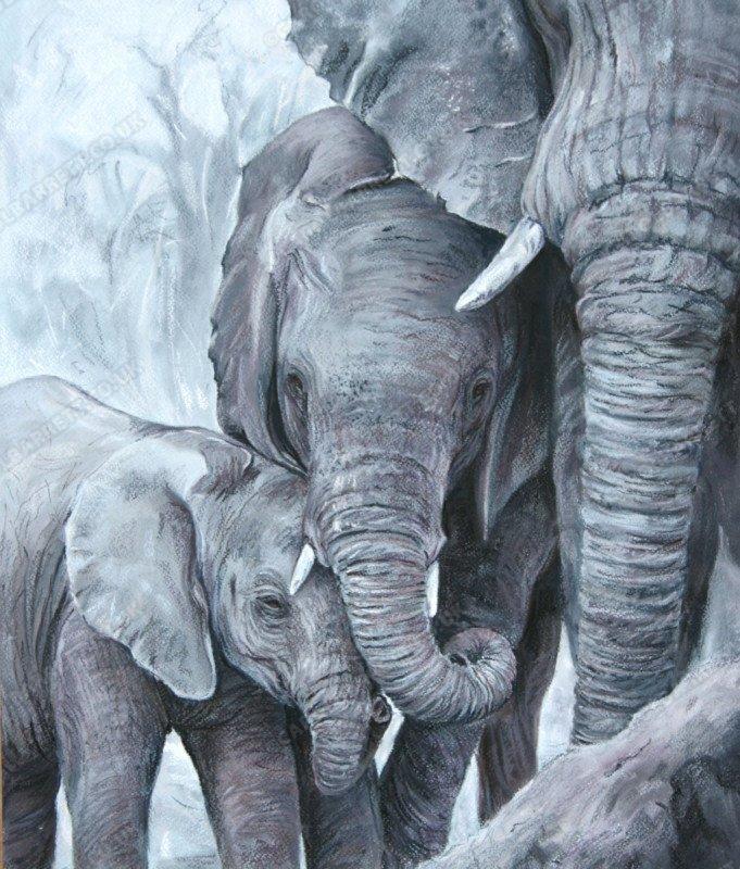 "<span style=""float:left"">Tender Giants</span><span style=""float:right""><a href=""http://www.carolbarrett.co.uk/paintings/tender-giants/?from=/elephants-sold/"">More info »</a></span>"