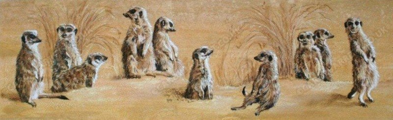 """<span style=""""float:left"""">Vigilant warm up – Meerkats</span><span style=""""float:right""""><a href=""""http://www.carolbarrett.co.uk/paintings/vigilant-warm-up-meerkats/?from=/african-wildlife-sold/"""">More info »</a></span>"""