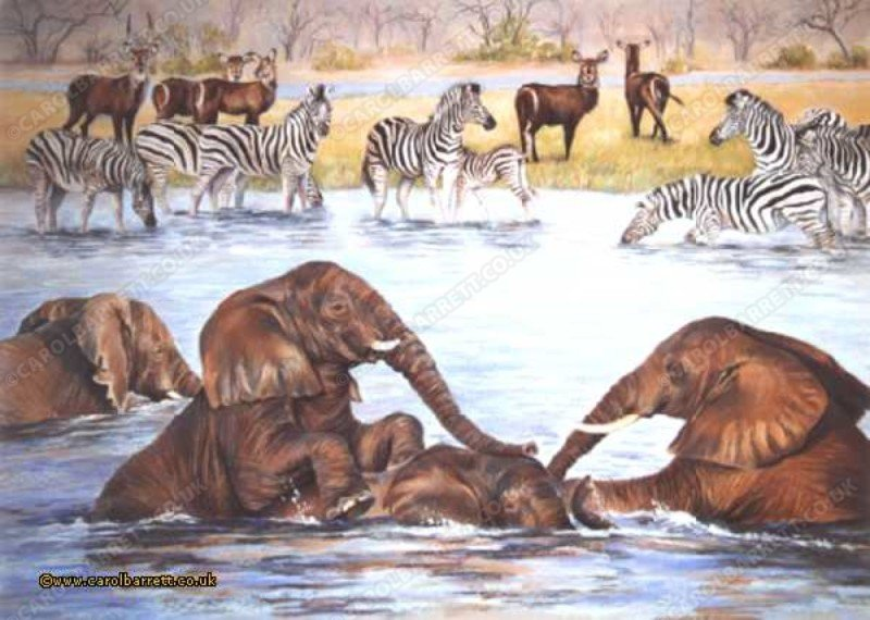 """<span style=""""float:left"""">Waterbuck, Zebra & Elephant</span><span style=""""float:right""""><a href=""""http://www.carolbarrett.co.uk/paintings/waterbuck-zebra-elephant/?from=/african-wildlife-sold/"""">More info »</a></span>"""