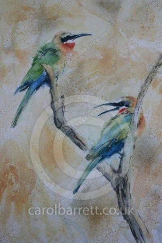 """<span style=""""float:left"""">Whitefronted Bee-eater</span><span style=""""float:right""""><a href=""""http://www.carolbarrett.co.uk/paintings/whitefronted-bee-eater/?from=/birds-sold/"""">More info »</a></span>"""