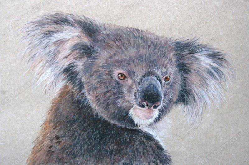 "<span style=""float:left"">Papa Joe</span><span style=""float:right""><a href=""http://www.carolbarrett.co.uk/paintings/papa-joe/?from=/australian-wildlife-for-sale/"">More info »</a></span>"