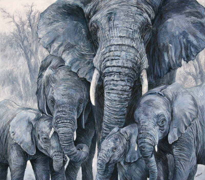 """<span style=""""float:left"""">Devoted Matriarch</span><span style=""""float:right""""><a href=""""http://www.carolbarrett.co.uk/paintings/devoted-matriarch/?from=/elephants-sold/"""">More info »</a></span>"""