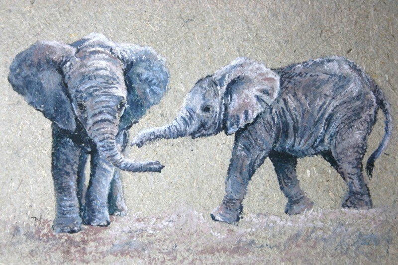 "<span style=""float:left"">Jambo</span> <span style=""float:right""><a href=""http://www.carolbarrett.co.uk/paintings/early-friendships/?from=/elephants-sold/"">More info »</a></span>"