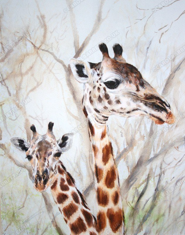 "<span style=""float:left"">Graceful Twiga</span> <span style=""float:right""><a href=""http://www.carolbarrett.co.uk/paintings/graceful-twiga/?from=/african-wildlife-for-sale/"">More info »</a></span>"