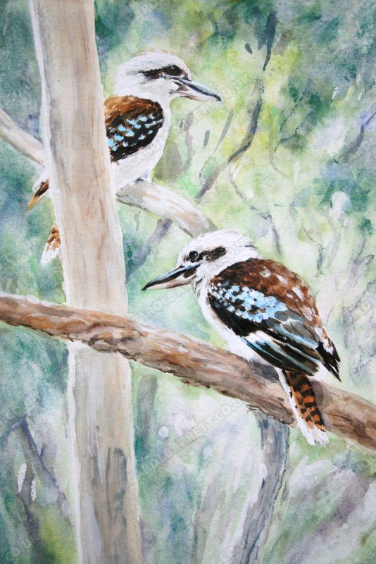 "<span style=""float:left"">Laughing Kookaburra</span> <span style=""float:right""><a href=""http://www.carolbarrett.co.uk/paintings/laughing-kookaburra/?from=/australian-wildlife-for-sale/"">More info »</a></span>"
