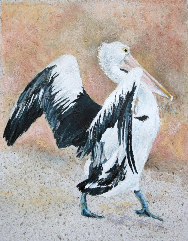 "<span style=""float:left"">Pelican strut</span> <span style=""float:right""><a href=""http://www.carolbarrett.co.uk/paintings/pelican-strut/?from=/on-specialty-paper-sold/"">More info »</a></span>"