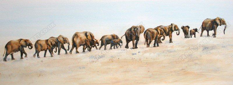 "<span style=""float:left"">Desert Giants</span><span style=""float:right""><a href=""http://www.carolbarrett.co.uk/paintings/desert-giants/?from=/elephants-sold/"">More info »</a></span>"