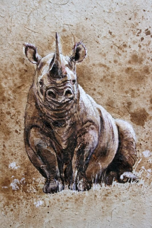 "<span style=""float:left"">Chilled Black Rhino</span> <span style=""float:right""><a href=""http://www.carolbarrett.co.uk/paintings/chilled-black-rhino/?from=/african-wildlife-sold/"">More info »</a></span>"
