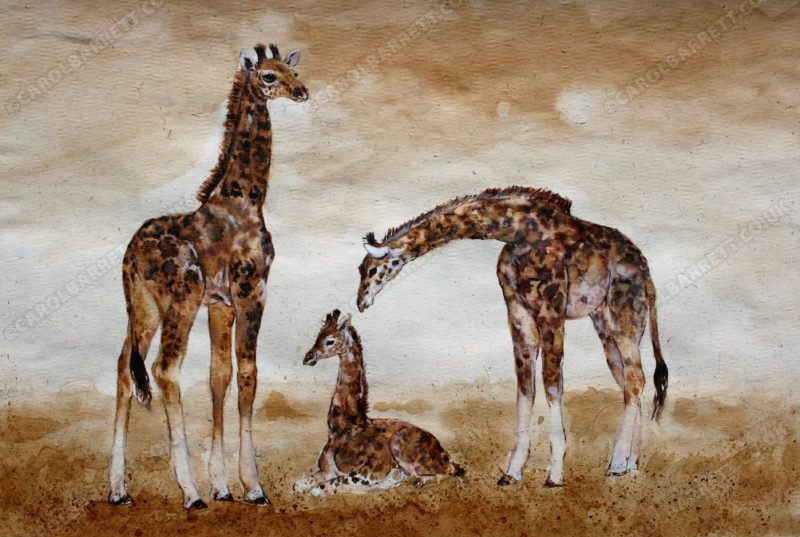 "<span style=""float:left"">Giraffe creche</span> <span style=""float:right""><a href=""http://www.carolbarrett.co.uk/paintings/giraffe-creche/?from=/on-specialty-paper-sold/"">More info »</a></span>"