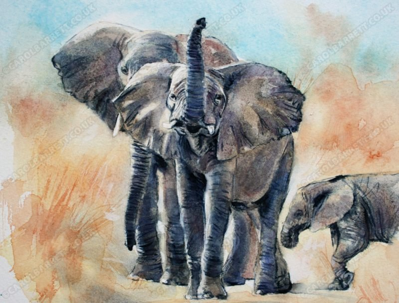 """<span style=""""float:left"""">Double checking</span><span style=""""float:right""""><a href=""""http://www.carolbarrett.co.uk/paintings/double-checking/?from=/elephants-sold/"""">More info »</a></span>"""