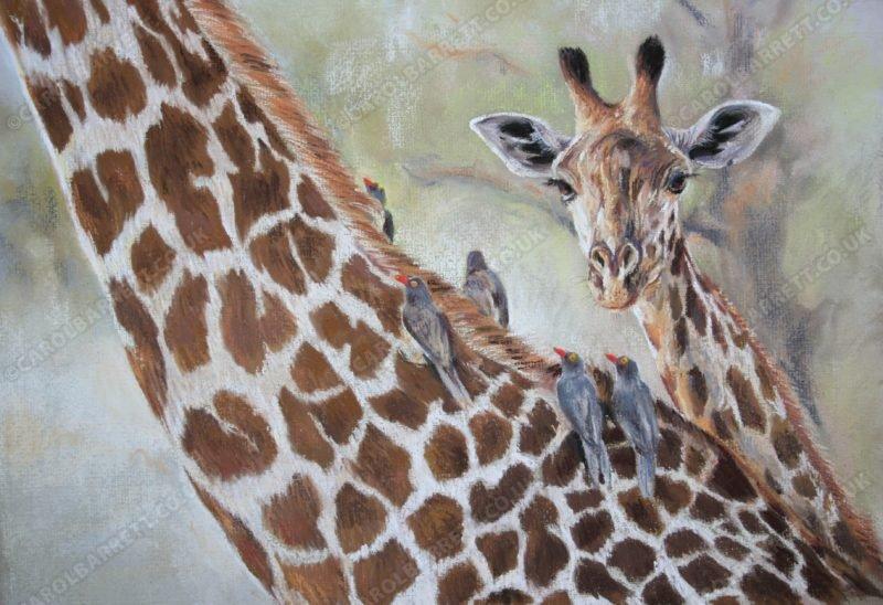 thornicrofts-giraffe-feathered-friends