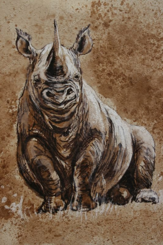 "<span style=""float:left"">Chilled Black Rhino</span> <span style=""float:right""><a href=""http://www.carolbarrett.co.uk/paintings/chilled-black-rhino-2/?from=/african-wildlife-for-sale/"">More info »</a></span>"