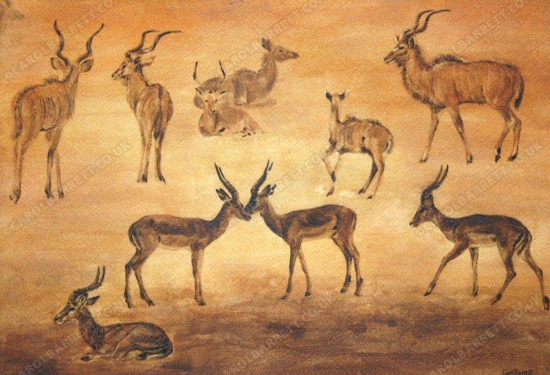 "<span style=""float:left"">Antelope dusk</span><span style=""float:right""><a href=""https://www.carolbarrett.co.uk/paintings/antelope-dusk/?from=/african-wildlife-for-sale/"">More info »</a></span>"