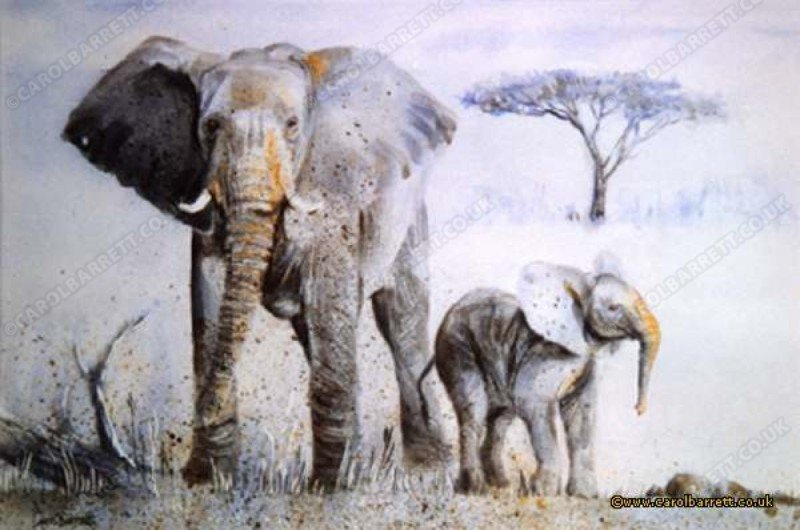 "<span style=""float:left"">Attention Taken (elephant with young)</span> <span style=""float:right""><a href=""https://www.carolbarrett.co.uk/paintings/attention-taken-elephant-with-young/?from=/elephants-sold/"">More info »</a></span>"