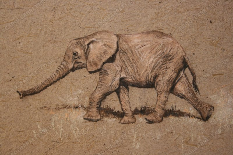 "<span style=""float:left"">Searching</span> <span style=""float:right""><a href=""https://www.carolbarrett.co.uk/paintings/catch-up/?from=/elephants-sold/page/2/"">More info »</a></span>"