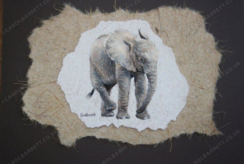 "<span style=""float:left"">Cross-legged – Baby elephant</span> <span style=""float:right""><a href=""https://www.carolbarrett.co.uk/paintings/cross-legged-baby-elephant/?from=/on-specialty-paper-sold/"">More info »</a></span>"
