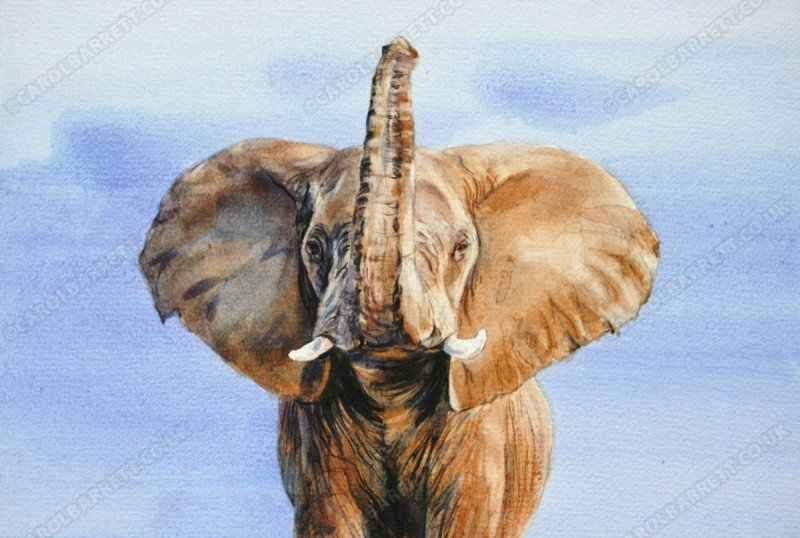 "<span style=""float:left"">Detected</span> <span style=""float:right""><a href=""https://www.carolbarrett.co.uk/paintings/detected/?from=/elephants-sold/page/3/"">More info »</a></span>"