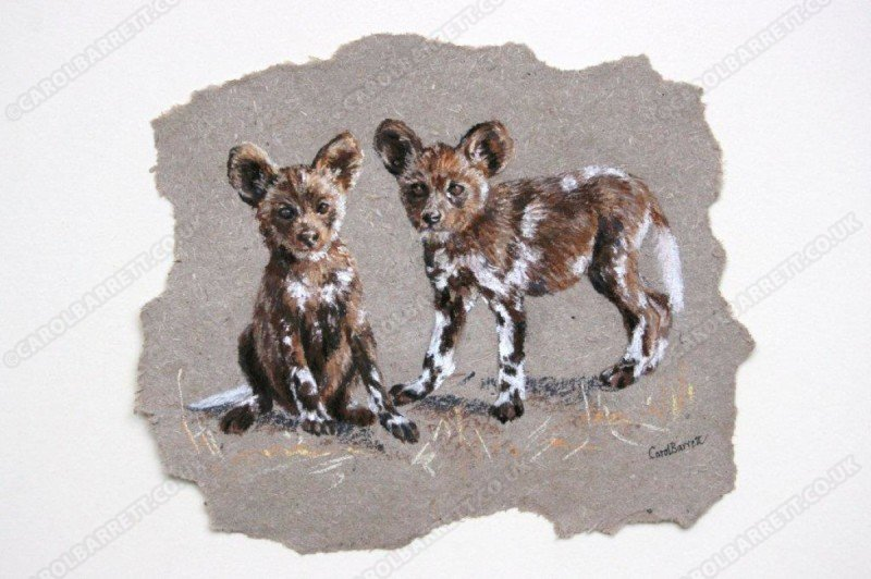 """<span style=""""float:left"""">Double trouble – African Wild Dog pups</span><span style=""""float:right""""><a href=""""https://www.carolbarrett.co.uk/paintings/double-trouble-african-wild-dog-pups/?from=/wild-dog-and-hyena-sold/"""">More info »</a></span>"""