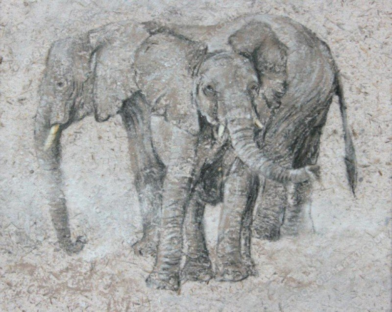 "<span style=""float:left"">Dust bath</span> <span style=""float:right""><a href=""https://www.carolbarrett.co.uk/paintings/dust-bath/?from=/elephants-sold/"">More info »</a></span>"