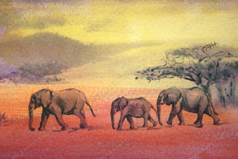 "<span style=""float:left"">Elephant finale</span> <span style=""float:right""><a href=""https://www.carolbarrett.co.uk/paintings/elephant-finale/?from=/elephants-sold/"">More info »</a></span>"