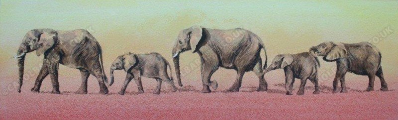 "<span style=""float:left"">Elephant trek</span> <span style=""float:right""><a href=""https://www.carolbarrett.co.uk/paintings/elephant-trek/?from=/elephants-sold/"">More info »</a></span>"