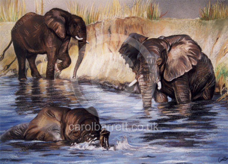 "<span style=""float:left"">Elephants by a sandbank</span> <span style=""float:right""><a href=""https://www.carolbarrett.co.uk/paintings/elephants-by-a-sandbank/?from=/elephants-sold/page/2/"">More info »</a></span>"