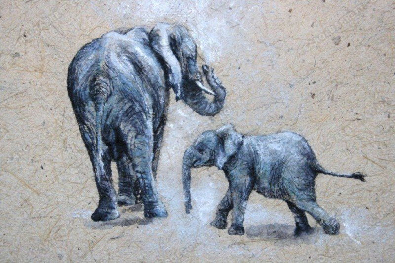 "<span style=""float:left"">Giant's talcum</span> <span style=""float:right""><a href=""https://www.carolbarrett.co.uk/paintings/giants-talcum/?from=/elephants-sold/page/3/"">More info »</a></span>"