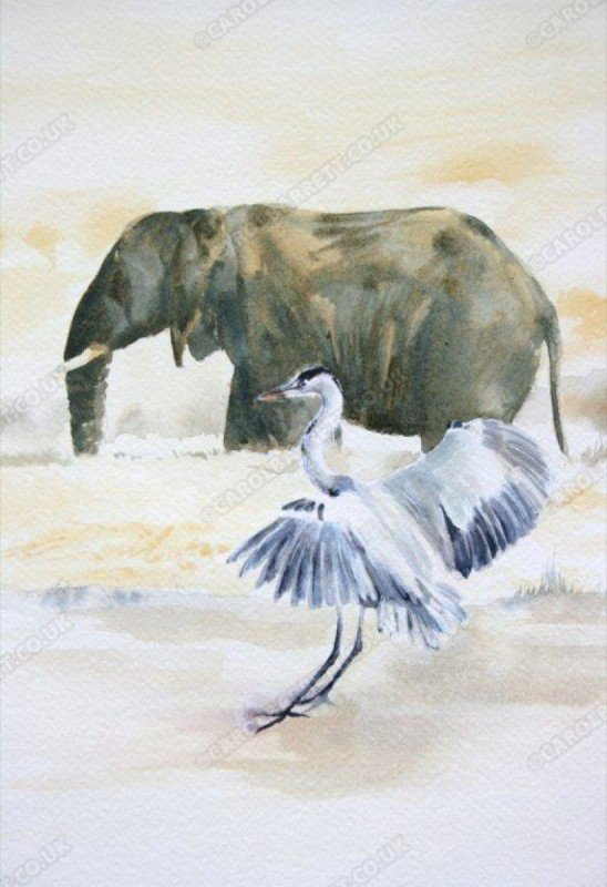 "<span style=""float:left"">Grey Heron</span> <span style=""float:right""><a href=""https://www.carolbarrett.co.uk/paintings/grey-heron-2/?from=/birds-for-sale/"">More info »</a></span>"