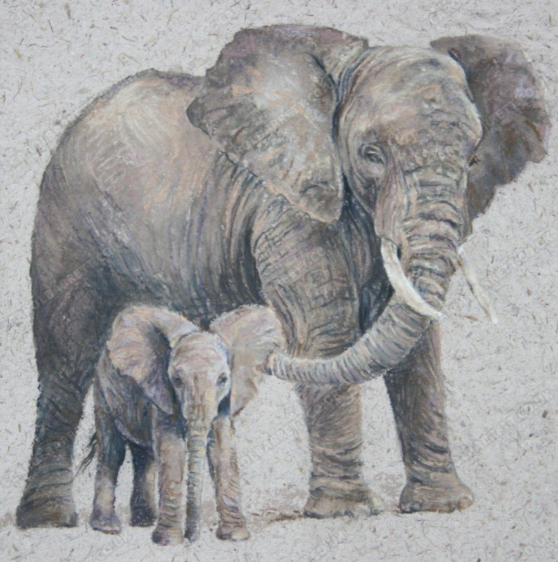 "<span style=""float:left"">In Attendance</span> <span style=""float:right""><a href=""https://www.carolbarrett.co.uk/paintings/in-attendance/?from=/elephants-sold/"">More info »</a></span>"