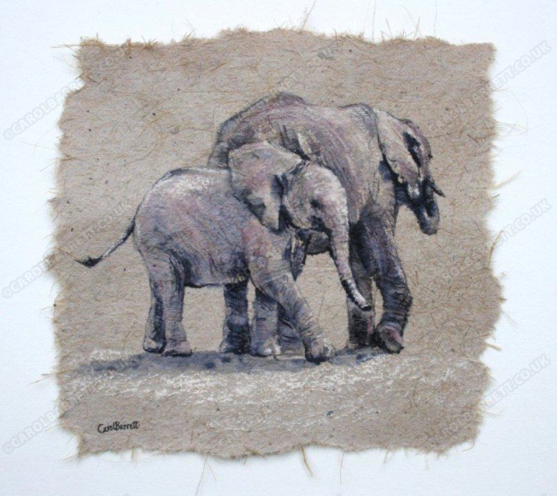 "<span style=""float:left"">Inseparable youngsters</span> <span style=""float:right""><a href=""https://www.carolbarrett.co.uk/paintings/inseparable-youngsters/?from=/elephants-sold/page/3/"">More info »</a></span>"