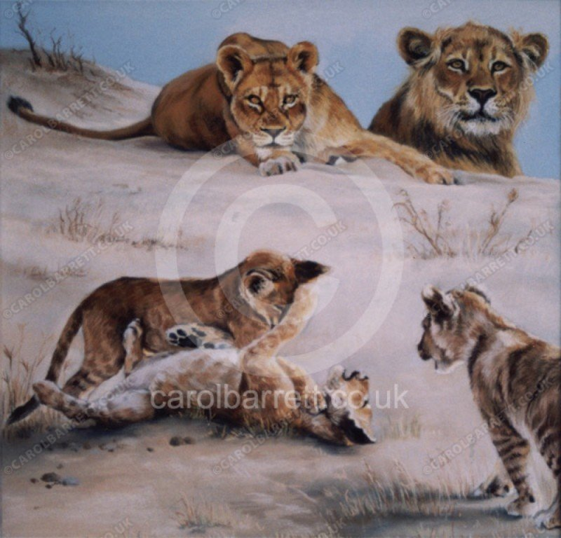 "<span style=""float:left"">Memories of Innocence (lions)</span> <span style=""float:right""><a href=""https://www.carolbarrett.co.uk/paintings/memories-of-innocence-lions/?from=/big-cats-sold/"">More info »</a></span>"