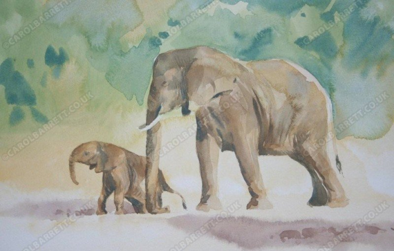 """<span style=""""float:left"""">Nurture</span><span style=""""float:right""""><a href=""""https://www.carolbarrett.co.uk/paintings/nurture/?from=/elephants-sold/page/2/"""">More info »</a></span>"""