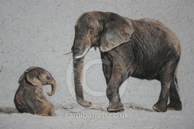 """<span style=""""float:left"""">Patience</span><span style=""""float:right""""><a href=""""https://www.carolbarrett.co.uk/paintings/patience/?from=/elephants-sold/page/2/"""">More info »</a></span>"""