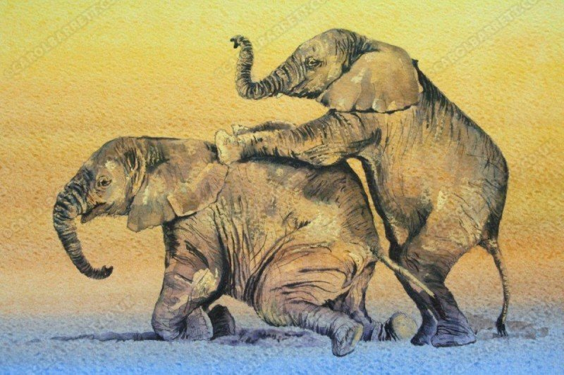 """<span style=""""float:left"""">Piggyback</span><span style=""""float:right""""><a href=""""https://www.carolbarrett.co.uk/paintings/piggyback/?from=/elephants-sold/page/2/"""">More info »</a></span>"""